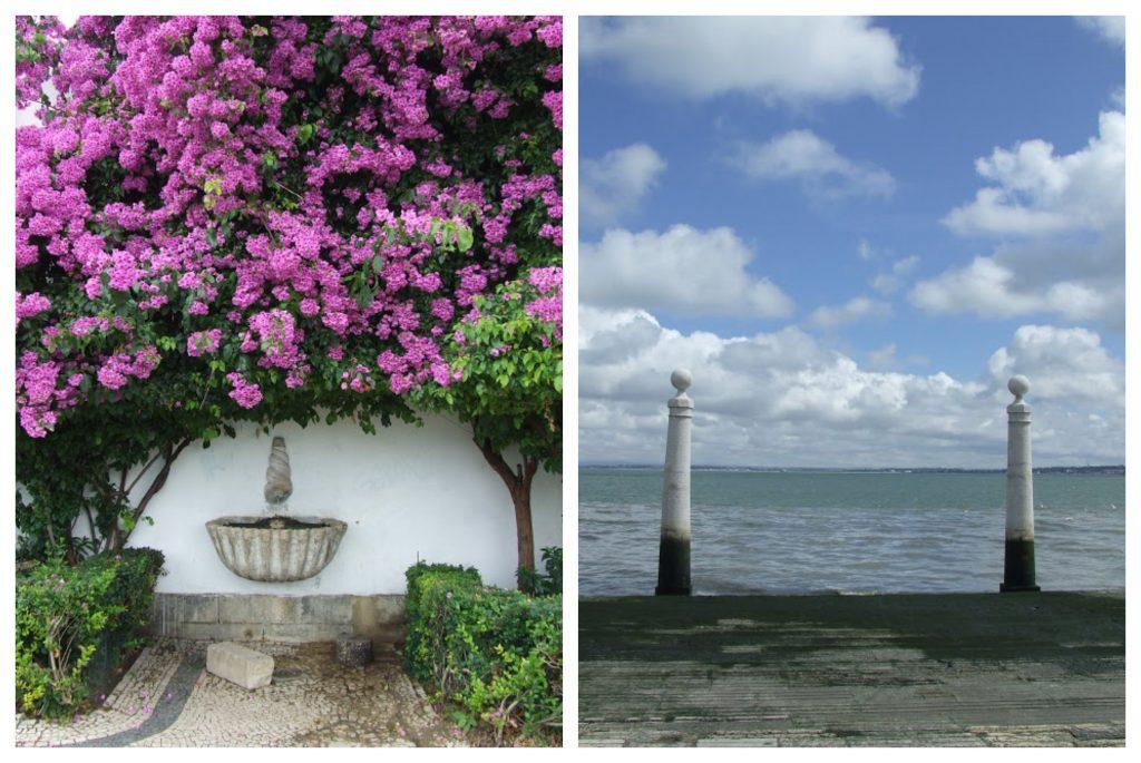 Lizbona woda kwiaty Portugalia