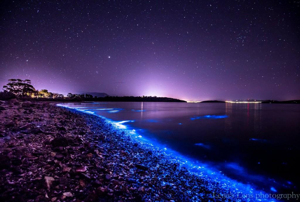 Tasmania Hobart świecąca rzeka