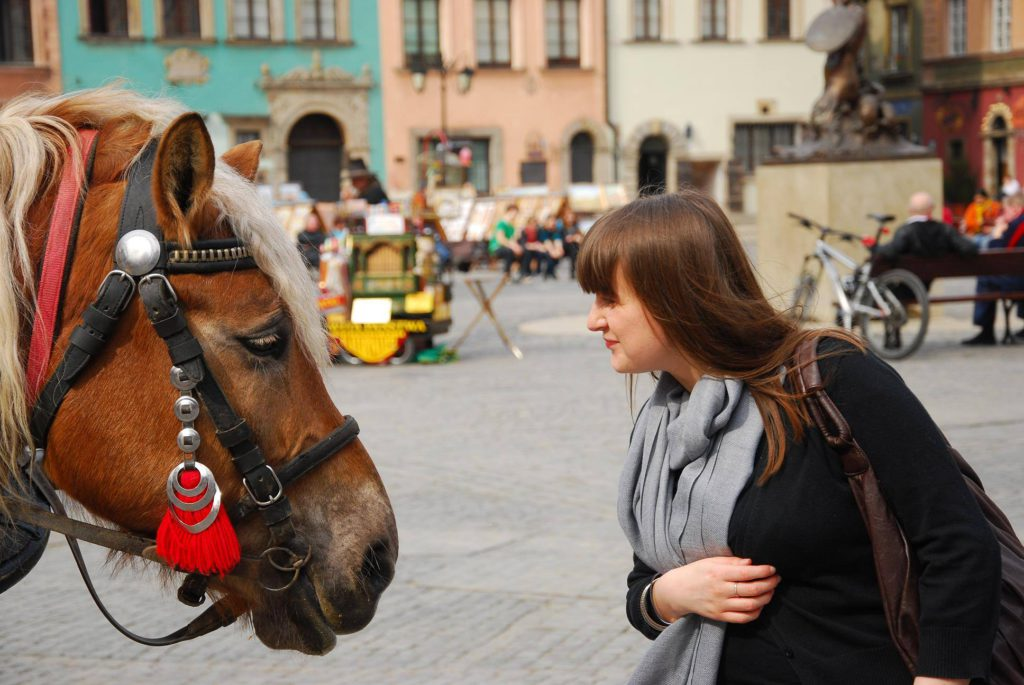 konie Tatry