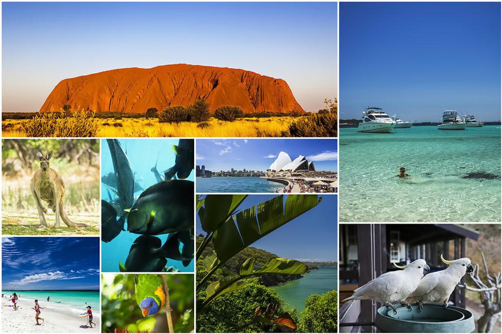Australia kolaż Uluru Sydney