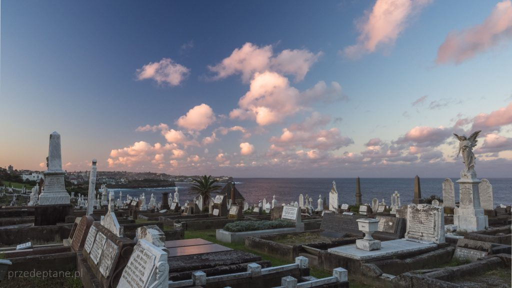 Cmentarz Waverley w Sydney