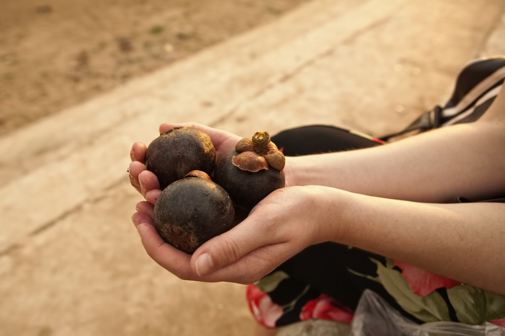 mangostan owoc
